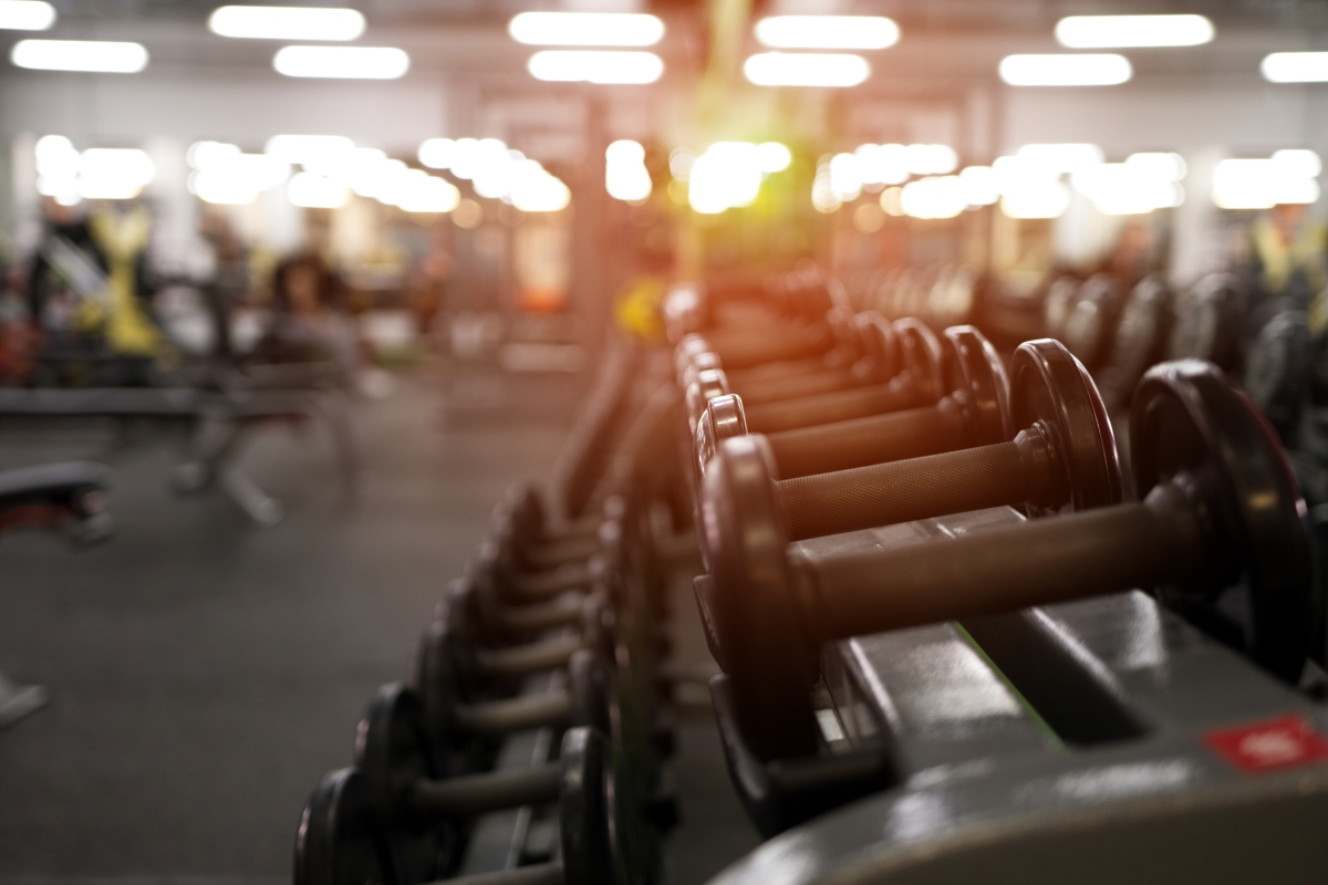 Free weights at Gym