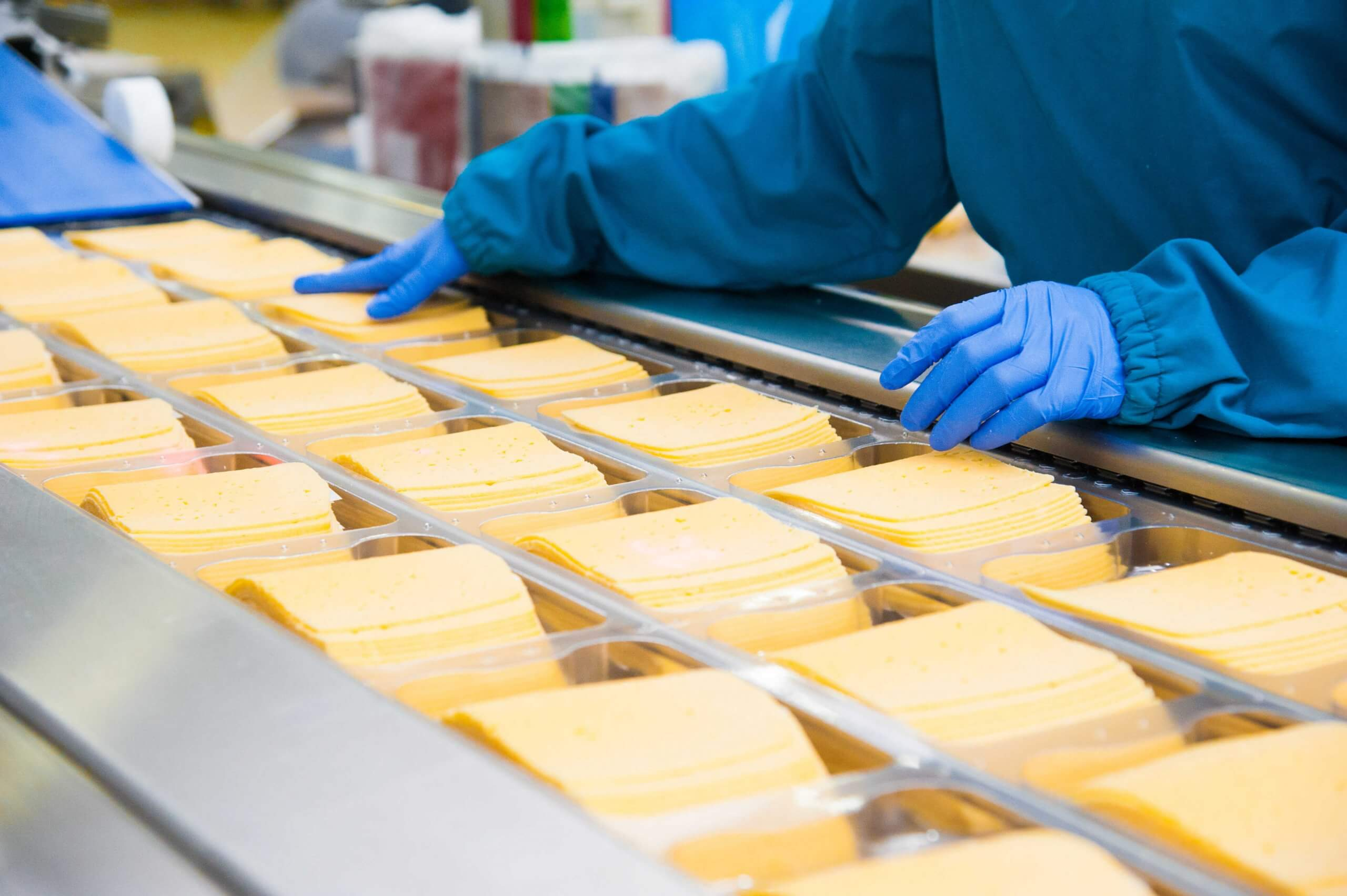 Cheese food processing facility